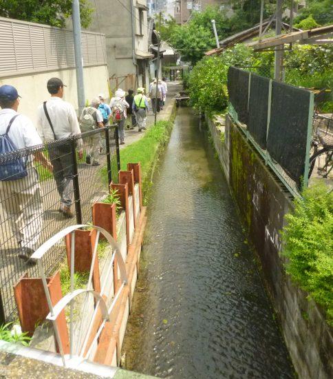 八尾と長瀬川の歴史散策開催
